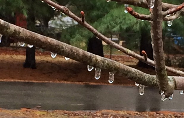 Sleet and freezing rain may result in ice accumulation