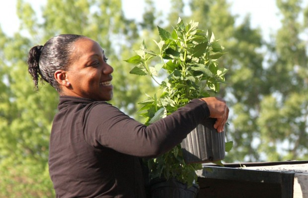 BACH brings healing power of planting to Fort Campbell