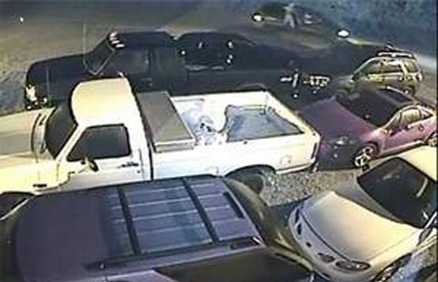 Police need help locating vehicle vandals