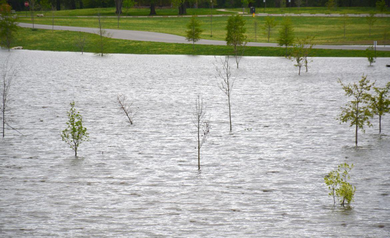Liberty Park flooding