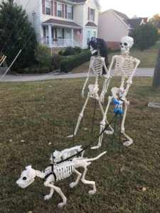 skeleton decorations 10 - Skeleton Decorations